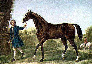 The Darley Arabian - One of the three foundation horses of the throughbred