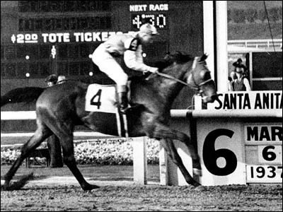 Seabiscuit - A famous Race Horse