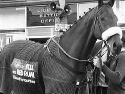 Red Rum- A famous Horse - 1965-1995